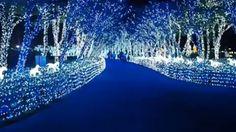 Illumia Lighting Theme Park Let's Run Park Busan