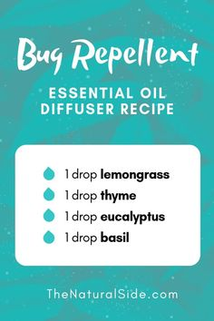 New to Essential Oils? Searching for Simple Essential Oil Combinations for Diffuser? Check out these 21 Easy Essential Oil Blends and Essential Oil Recipes Perfect for Beginners. Essential Oils For Mosquitoes, Doterra Essential Oils, Young Living Essential Oils, Mosquito Repellent Essential Oils, Essential Oil Bug Spray, Thyme Essential Oil, Lemongrass Essential Oil, Pure Essential, Essential Oil Combinations