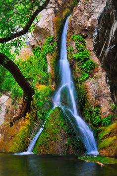 Darwin Falls is located on the western edge of Death Valley National Park, California by Lars Dugaiczyk