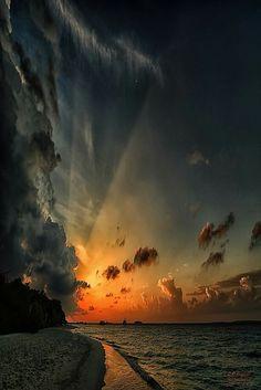 Au gré du vent,j'irai là où les images m'emporteront