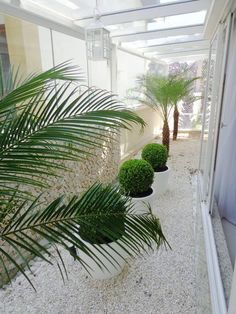 Sem sujeira e com pouca manutenção, os jardins sem grama são uma ótima pedida para quem quer ter um jardim mas possui um pequeno espaço
