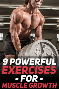 Check out these 9 powerful exercises for muscle growth. These exercises are without a doubt going to help you boost muscle growth and strength development due to their compound and high intensity nature. Make sure that these staple exercises are a part of https://www.musclesaurus.com/