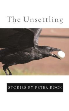 The Unsettling by Peter Rock, http://www.amazon.com/dp/1596922141/ref=cm_sw_r_pi_dp_jwvfqb0A7D8Z4