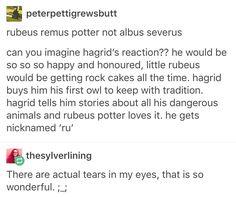 Albus Severus potter Rubeus Hagrid Remus Lupin Harry Potter Hogwarts the next generation
