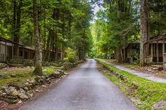 Elkmont – Great Smoky Mountains National Park