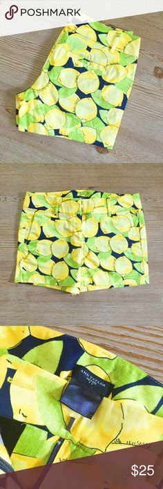 💋Ann Taylor Lemon Print Petite Shorts Shorts are brand new without tags, just tried on. Size is 00 PETITE.    🎉I. A M. A. S U G G E S T E D. U S E R🎉       📫Shipping the day of or next day📫                    C L O S E T. R U L E S                   •no trading + FINAL PRICE                   •smoke free home Ann Taylor Shorts