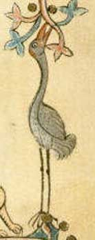 A crane (note the patch of red on its head) reaching for fruit.  British Library, Additional MS 70000, Folio 65r