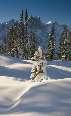 Gosaukamm - Austrian Alps