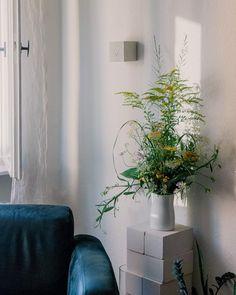 SLOW FLOWERS aus dem eigenen Garten mit Goldrute, Wicken, Schafgarbe und natürlichen Blumen. Ikebana, Wicken, Amaryllis, Vase, Plants, Lilac Bushes, Tulips, Cut Flowers, Daffodils