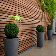 Home Dzine Garden Ideas - How to disguise or cover up vibracrete or precast concrete walls