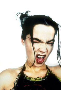 Björk by Davies & Davies 1993