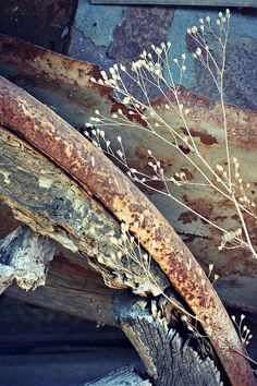 A fun image sharing community. Explore amazing art and photography and share your own visual inspiration! Painting Inspiration, Color Inspiration, Rust Never Sleeps, Rust Paint, Peeling Paint, Still Life Photography, Nature Photography, Wabi Sabi, Rustic Design