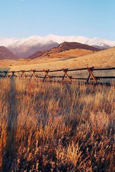 If I never move to Montana..I still want a fence like this, because I WILL have a pasture and horses :)