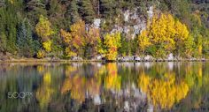 Autumn coloured trees reflecting of a calm lake in Norway. June Lake Loop, Colorful Trees, Silver Lake, Time Of The Year, Autumn Trees, Beautiful Images, Norway, Orange Color, Nature Photography