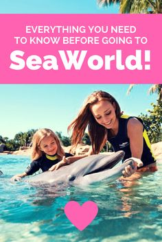 Not sure why SeaWorld became such a taboo subject? Read on, my friend