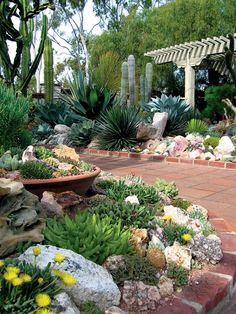 View from the gate into the Succulent Garden at Sherman Library & Gardens, CA. Author's photographs