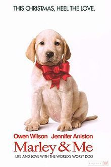 MARLEY & ME (2008): A family learns important life lessons from their adorable, but naughty and neurotic dog.
