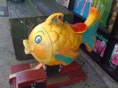 a fish ride
