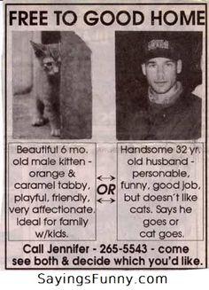 Cat or husband?