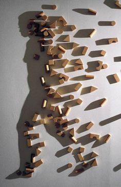 Shadow Art