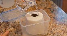 Hoy en la wikiguia te daremos los mejores usos domesticos del vinagre blanco que era utilizado por nuestras abuelas prácticamente para todo. Anuncio Para conocer todos los usos del vinagre blanco te dejamos este vídeo explicativo: Ingredientes: un recipiente con tapa un rollo de papel higienico una taza de vinagre blanco Anuncio Procedimiento: Toma el …