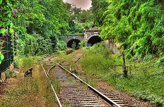 train tunnel entrances, petite ceinture, abandoned railway, paris, france - Click photo to visit site and view larger image
