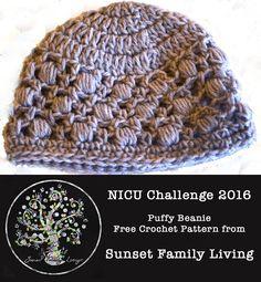 Free Crochet Pattern: Waffle Beanie – Sunset Family Living