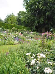 England Travel Inspiration - Beautiful British Gardens: Coton Manor Gardens, Northamptonshire is one of the most beautiful places to visit to see a classic english country garden full of climbing roses and flowers galore. Why not plan your visit take a traditional afternoon tea in the courtyard and check out the pet flamingos in the gardens. If you love National Trust gardens then this garden is a must see on your next vacation to England. Pop over to my blog to see more photos of these…