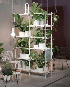 Stick shelving system full of green, Menu A/S pot planters, modern, scandinavian design, nordic interiors Crioll studio / design shop Eindhoven