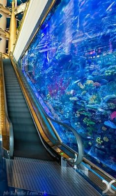 Hotel Burj Al Arab ,Dubai