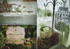 Wicked Plants Wedding