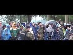 Muslim migrants in Macedonia refuse Red Cross parcels because of... the red cross - YouTube