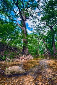 Little Blanco River Ranch For sale in Blanco County, Texas Ranches For Sale, Texas Ranch, Texas Hill Country, Golf Courses, Trees, River, Beautiful, Tree Structure, Wood