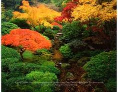 japanese gardens with rhododendrons - Google Search