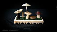Miniature Fungi and mushrooms hand carved from Whitby jet, Ivory and tortoise shell set on a 40mm ivory base.