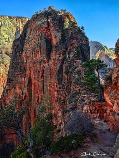 Angels Landing, Zion National Park, Utah; photo by Chad Dutson on 500px