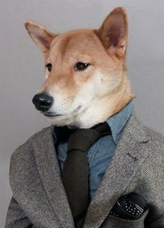 Dogs don't just drool. They are also capable of cleaning up their slobbering acts and picking out impeccably chic outfits. Case in point: the fashion-forward Menswear Dog from New York City, who regularly shows off his faultless sartorial choices on Instagram and Tumblr. The 3-year-old Shiba Inu is also a bit of a player — [...]