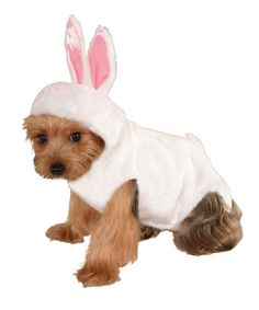 Loving this Rubie's Bunny Pet Costume on #zulily! #zulilyfinds  @Carrie Randolph Your puppies need this!!!