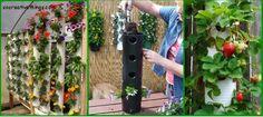 Simple Planters To DIY Gardens