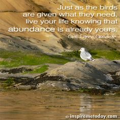 Quote-Just-as-the-birds are givem what they need, live your life knowing that abundance is already yours ~ Gail Lynne Goodwin