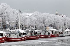 Rostock The Baltic port of Rostock frost surprised the stranded ships along the beach while the water slowly freezes.