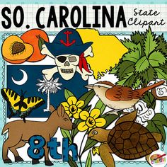 "South Carolina state clip art and line art includes 12 high quality color and black line clipart illustrations to show the state's flag, flower, tree, bird, and more. All images are 300 dpi for high quality printing.This state clip art set includes: South Carolina state shape, state flag, palmetto (palm) tree, yellow jasmine flower, Carolina wren, pirate skull and crossbones, white-tailed deer, tiger swallowtail butterfly, loggerhead sea turtle, peach, cotton plant, and ""8th"" for the 8th…"
