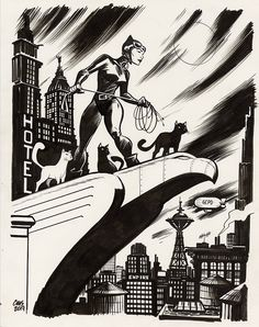 Catwoman by Cameron Stewart