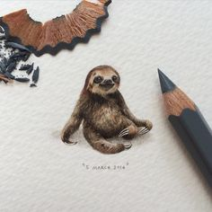 INTRODUCING : FURSDAYS! As the third part of #potluck100pfa, Thursdays will be dedicated to our furry (and feathery) friends. So yes, this means that you'll be able to commission a painting of your pet. This is day 3/100 (1/25 Thursdays) : Timoteus the Sloth (the year should be 2015, I've fixed that now. Oops.) 25 x 24 mm.  #watercolour #pet #painting #paintingsforants