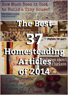 Browse through the list, pin your favorites, and let me know which homesteading article of 2014 is your absolute favorite.