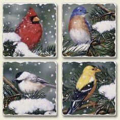 Backyard Birds Set Of 4
