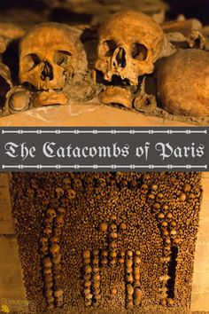 Exploring the catacombs in Paris | Submerged Oaks