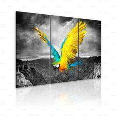 Quadro Uccello paradisiaco - pappagallo