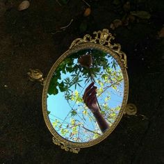 Find images and videos about photography, indie and aesthetic on We Heart It - the app to get lost in what you love. Flower Aesthetic, Aesthetic Photo, Aesthetic Pictures, Photos Tumblr, Blue Sargent, Mirror Photography, Alice In Wonderland, Reflection, Indie