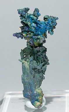 Chalcocite and Djurleite with Chalcopyrite. Rear